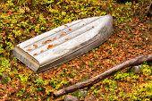 Metal Boat Upside Down In The Woods