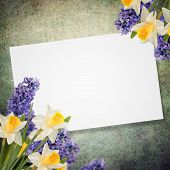 Holiday Background With Spring Flowers  And Empty  Place For Your Text