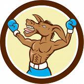 Donkey Boxing Celebrate Circle Cartoon