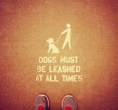 Dogs on leash sign in public park toned with a retro vintage instagram filter effect