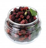 image of mulberry  - Ripe mulberry berries in a glass jar freshly picked - JPG