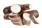 stock photo of cassava  - Many cassava  - JPG