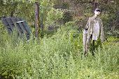 Scarecrow Fashion-doll