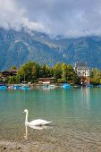 alpine Lake Brienz
