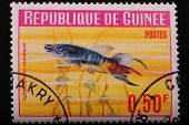Guinea-circa1964 Postage Stamp Printed In Republic Of Guinea Shows The Image With The Inhabitants Of