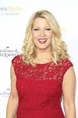 LOS ANGELES - JAN 8: Barbara Niven at the TCA Winter 2015 Event For Hallmark Channel and Hallmark Movies & Mysteries at Tournament House on January 8, 2015 in Pasadena, CA