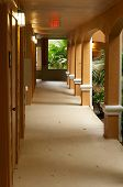image of florida-orange  - Looking down an outside hallway or walkway in naples florida surrounded by palms - JPG