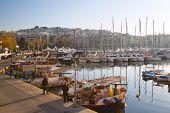 Zea marina, Athens.