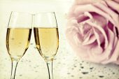 Two glasses of champagne over beautiful background of pink rose