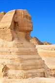 The Sphinx in Giza, Egypt.