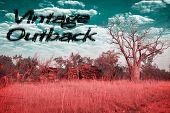 Vintage Australia Outback