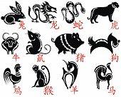 The Twelve Chinese Zodiac