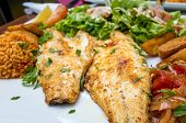 grilled fish and rice-french cuisine dish with tomato and salmon
