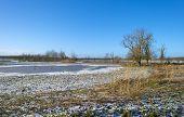 Snowy shore of a frozen lake in winter