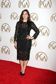 LOS ANGELES - JAN 24:  America Ferrera at the Producers Guild of America Awards 2015 at a Century Plaza Hotel on January 24, 2015 in Century City, CA