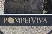 Detail Of Pompei Viva Insigna