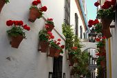 Street of the flowers, Cordoba.