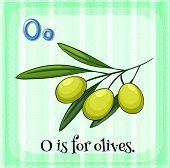Illustration of a letter O is for olives