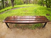 pic of distort  - Bench in the park just after a spring rain with wide angle distortion view - JPG