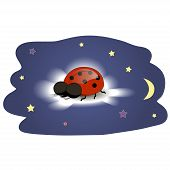 stock photo of ladybug  - Ladybug sleeping on a cloud at night - JPG