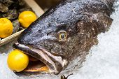 image of fish skin  - close up of a raw meagre fish with a lemon in the mouth - JPG