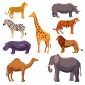 picture of rhino  - Africa animal decorative set with leopard zebra hippo giraffe camel elephant lion tiger rhino isolated vector illustration - JPG