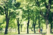picture of seasonal  - Defocused background of park in spring or summer season blurred people walking retro colors - JPG