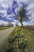 Baddesley Clinton Estate Warwickshire. View From The Heart Of En