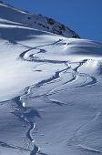 Snowboards Track