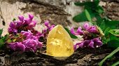 Citrine Gem Stone On Wood
