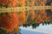 Autumn Foliage Reflected In Water