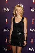SAN DIEGO - JUL 23: Alison Haislip at the SyFy/E! Comic-Con Party at Hotel Solamar in San Diego, Cal