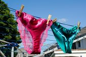 Lesbian concept of silk knickers on washing line