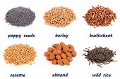 Examples of foods rich in protein and starch