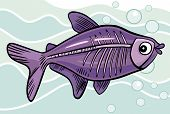 stock photo of x-ray fish  - cartoon vector  illustration of x - JPG