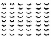 Set Of Female Eyelashes. Collection Of False Eyelashes. Black And White Illustration Of Closed Eyes. poster