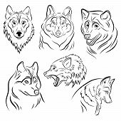 Set Of Portraits Of Wolves. Collection Of Wolf Heads. Black And White Illustration Of A Wild Animal. poster