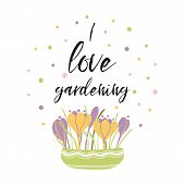 I Love Gardening Phrase Decorated Flower Bouquet Crocuses In Pot Vector Inspirational Phrase poster