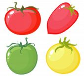 Set Tomato