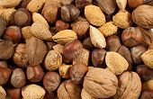 stock photo of mixed nut  - Close - JPG