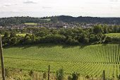 image of dork  - View across the town of Dorking in Surrey - JPG