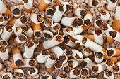 Cigarettes Chaos Closeup