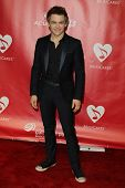 LOS ANGELES - FEB 8:  Hunter Hayes arrives at the 2013 MusiCares Person Of The Year Gala Honoring Br
