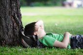 Boy Sleeping Under Tree