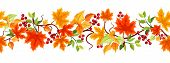 stock photo of fall decorations  - Vector horizontal seamless background with colorful autumn leaves and rowanberries on a white background - JPG