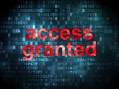 Security concept: Access Granted on digital background