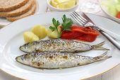 sardinhas assadas, charcoal grilled sardines, Portuguese food