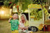 lemonade picnic