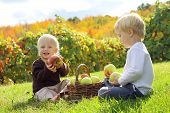 Young Children Eating Fruit At Apple Orchard