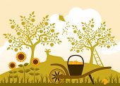 image of hand-barrow  - vector hand barrow with basket of apples and resting goat in garden - JPG